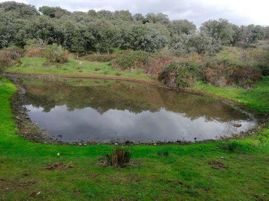 Ruta a la Marota y arroyo Oncalada